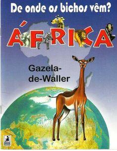 Africa - Gazela - Erika Vecci - Álbuns Web Picasa