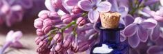 El marketing olfativo pretende asociar un determinado aroma con los valores que desea transmitir la empresa, cliente o producto.  A un simple golpe de nariz el cliente relacionará el producto con un concepto, una idea, una sensación o un momento… #aromaclima #marketingolfativo #marketingsensorial #aroma #fragancia