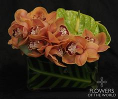 "Summer Collection 2015 ""Duets"" Cymbidium Orchids & Anthurium Flowers of the World, NYC www.flowersoftheworld.com"