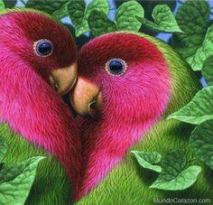 Love Birds pink heart in nature ! Cute Birds, Pretty Birds, Funny Birds, Birds 2, Angry Birds, Wild Birds, Exotic Birds, Colorful Birds, Tropical Birds