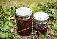 Gem de prune fara zahar, reteta simpla si rapida Romanian Food, Raw Food Recipes, Preserves, Pickles, Gin, Diy And Crafts, Mason Jars, Deserts, Canning