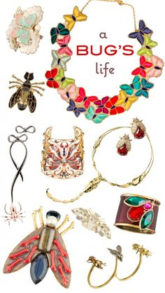 bug insect butterfly beetle jewelry