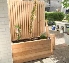 Bilderesultat for bygging av levegg Rooftop Garden, Terrace, Patio Privacy, Garden Trellis, Outdoor Furniture, Outdoor Decor, Wood Pallets, Planters, Exterior