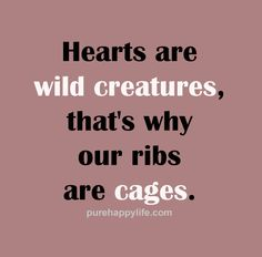 #quotes - hearts are wild creatures...more on purehappylife.com