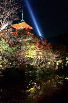 How to get to navigate to Kiyomizudera Temple Kiyomizu dera sannenzaka ninenzaka map location bus routes train subway Kyoto Travel Guide, Travel Tips, Kyoto Japan, Japan Travel, Candid, Temple, Autumn, Places, Kitchens
