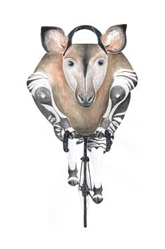 Okapi auf RIDING RHINO #Okapi #Fahrrad #Rennrad #AnimalArt #Illustration #bikinganimal #bicycle #Aquarell #watercolor