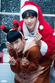 Santa Hoshi & Reindeer DK