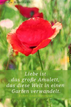 """""""Liebe ist das große Amulett, das diese Welt in einen Garten verwandelt."""" (Robert Louis Stevenson) www.mediveda.de Foto: Sonja Moormann"""