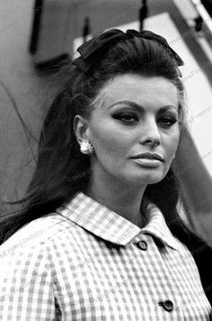 Beauty named Sophia Loren. Brigitte Bardot, Classic Hollywood, Old Hollywood, Loren Sofia, Sophia Loren Images, Greta, Old Movie Stars, Italian Actress, Italian Beauty
