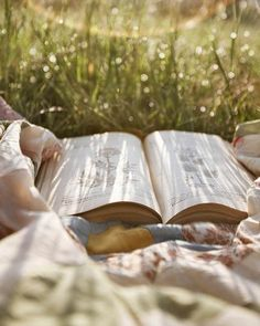 Book lying on blanket in the grass >> serene, peaceful,
