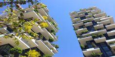La arquitectura verde está más de moda que nunca. Esto es así, entre otras muchas cosas, por la influencia de Stefano Boeri. Descubre al arquitecto italiano.