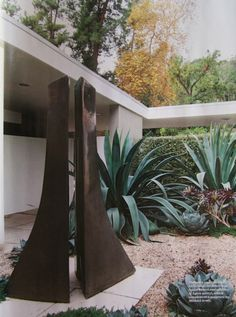 This is a sculpture garden, and I think the agave is the best sculpture in there - gorgeous form!