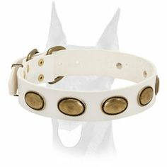 Exquisite #white #leather #collar with #studs for #Doberman collar $59.90