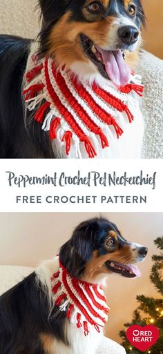 Free Peppermint Crochet Pet Neckerchief crochet pattern in Red Heart Super Saver yarn. Your pet will look PAWSitively precious in this peppermint-inspired crochet neckerchief! Stitched on the bias and worked in the back loops to create a stunning ribbed texture with crisp color changes, this stripy accessory is a joy to crochet. Added ties and an easily customizable circumference result in a perfect fit every time! Crochet Pet, Crochet Baby Dress Pattern, Crochet Cross, Easy Crochet Patterns, Crochet Gifts, Crochet Animals, Free Crochet, Super Saver, Halloween Party Costumes