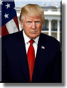 For the record, I don't hate Donald Trump the person. I hate Donald Trump the president. Here's why: He's a pathol. Donald Trump, John Trump, American Presidents, Us Presidents, American History, Exclusive Club, Presidential Portraits, Reportage Photo, Portrait Pictures