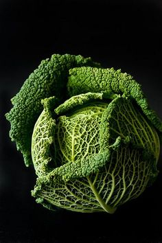 Savoy cabbage is a green beauty that enhances any meal. Easy to prepare just slice thin or shred and mix with your favorite vinaigrette a few hours in advance. A nice Japanese version of this is 1 tbsp soy sauce + black vinegar + 3 tbsp olive oil World Of Color, Color Of Life, Fruit And Veg, Fruits And Vegetables, Still Life Photography, Food Photography, Beauty Photography, Savoy Cabbage, Green Cabbage