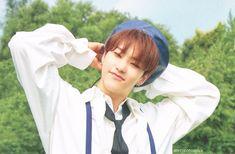 Carat Seventeen, Seventeen Album, Hoshi Seventeen, Woozi, Jeonghan, Wonwoo, Star In Japanese, Team Leader, Pledis Entertainment