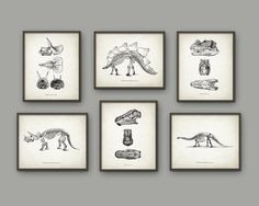 Dinosaur Print Set Of 6 - Dinosaur Skeleton - Prehistoric - Geology Student - Paleontology - Fossil Book Plate Illustration - Boys…