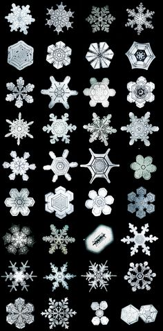 online snowflake library: The Bentley Collection.  Thousands of snow crystals available for viewing online, for free.