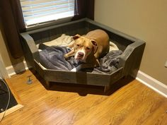 Handcrafted large pallet dog bed designed to fit conveniently in the corner of your room! The back sides of the large bed (from the corner) are 35