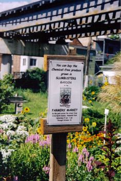 Slumbusters Community Garden in Chicago, IL. First community garden I helped start 26 years ago with the Earles.