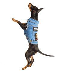Custom Made Dog Battle Jacket - PetHaus