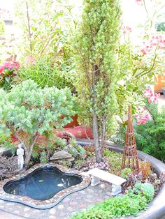 Lights, Camera, Action! Photographing Your Miniature Garden | The Mini Garden Guru - Your Miniature Garden Source