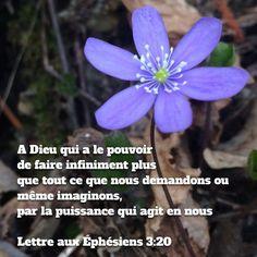 #Dieu #puissant #nature #fleur #labible #bible #verset #versetdujour #versetbiblique