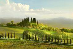 Asciano ~ Tuscany