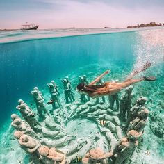 We sometimes forget there's a world to see under the sea 🐠 (Gili Meno, Indonesia) Beautiful Places To Travel, Best Places To Travel, Vacation Places, Dream Vacations, Cool Places To Visit, Dream Vacation Spots, Photos Voyages, Travel Aesthetic, Adventure Is Out There