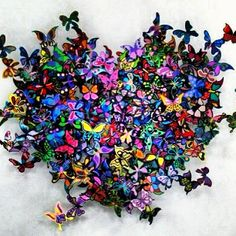 Butterflies are so pretty <3