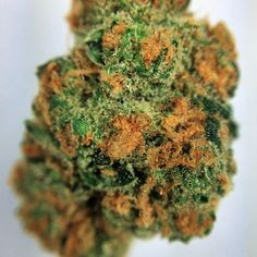 night-terror-og.Buy Marijuana/ Buy weed /Buy cannabis and marijuana products.You have been thinking of  where to get the oldest and the best marijuana strains as well as concentrates and edibles, and place your order to get in shipped within 48 hours max.