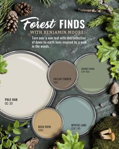 Benjamin Moore Forest Green Paint Color Scheme - Interiors By Color Green Paint Colors, Interior Paint Colors, Paint Colors For Home, Room Colors, Cabin Paint Colors, Country Paint Colors, Colours, Paint Color Palettes, Paint Color Schemes