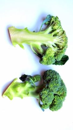 3 pressure cooker nutrition myths that just won't go away... 'til now.