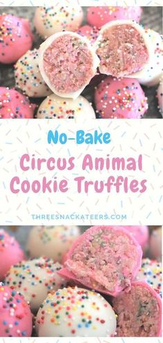 No-Bake Circus Animal Cookie Truffles No-Bake Circus Animal Cookie Truffles Making sweet treats doesn't need to turn your kitchen into a zoo. All you need are 5 simple ingredients to create these adorable No-Bake Circus Animal Cookie Truffles. Dessert Party, Snacks Für Party, Party Desserts, Cookie Desserts, Party Fun, Dessert Table, Baking Desserts, Healthy Birthday Desserts, Appetizer Dessert