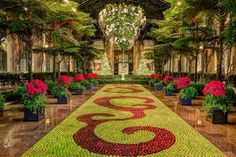 Great place to get warm in the winter months! - Review of Longwood Gardens, Kennett Square, PA - TripAdvisor Kennett Square, Palace Garden, Christmas Garden, Famous Gardens, Small Town America, Longwood Gardens, Warm In The Winter, Christmas Aesthetic, Formal Gardens