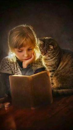 chat lisant avec sa petite compagne.