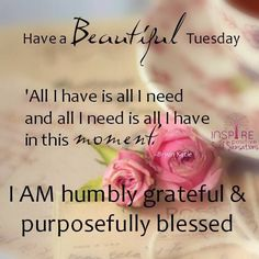 Have A Beautiful Tuesday good morning tuesday tuesday quotes good morning…