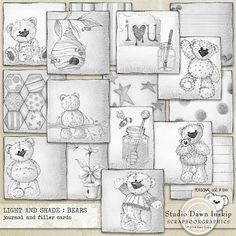 Light and Shade : Bears Illustrated Journal and Filler Cards by Dawn Inskip $3.95