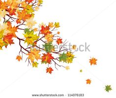 Leaves Autumn Stock Photos, Leaves Autumn Stock Photography, Leaves Autumn Stock Images : Shutterstock.com