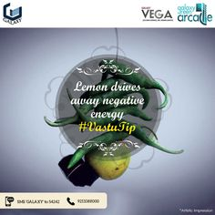 To shoo away negative energy, place a lemon in a glass of water. This water needs to be changed every Saturday. This must be done religiously each week.#Galaxygroup #RealEstate #Homes #CommercialProjects #RealEstateProject #NoidaProperty #ResidentialProject #GalaxyRoyale #GalaxyGroupFlats #GalaxyPlaza #GalaxyVegaInNoida