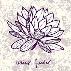 Worksheet. dibujos para colorear de flor de loto  flor de loto  Pinterest