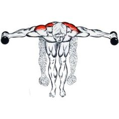 Manage Your Body With These Tips And Tricks Deltoid Workout, Buttocks Workout, Dumbbell Workout, Kettlebell, Golf Exercises, Back Exercises, Fit Board Workouts, Gym Workouts, Workout Board