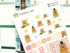 This set will include 33 different stickers that look great in the weekly boxes of the erin condren life planner as you can see in the picture