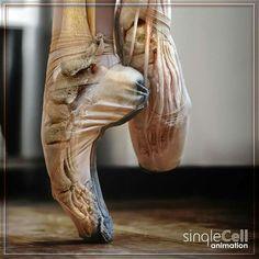 Kinda creepy actually Ballerina Feet, Ballet Feet, Dancers Feet, Ballet Dancers, Dance Like No One Is Watching, Just Dance, Modern Dance, Dancer Problems, Pretty Ballerinas