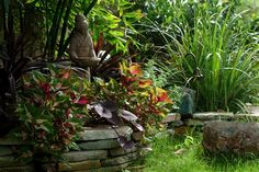 I built this meandering stacked stone wall with stones from a local quarry. Behind it I planted TImber Bamboo, Cordyline, Coleus, Potato Vine and Moraea and accented with a stone Geisha bird feeder. In a few short months the plants had completely obscured the wall behind them and today, several years after the installation the Bamboo has soared to a commanding 65 feet and shades most of this lush desert oasis. Garden Design and photo by Tom Clark for inandoutbydesign.com