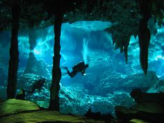 """Mexican Cenotes & Cenote diving The Yucatan region around Cancun has an estimated 7,000 of these limestone """"sinkholes"""" Cenotes go all the way back to Mayan ritual use"""