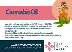 #Healthy #CannabisMedicinal #CancerCure #Cancer