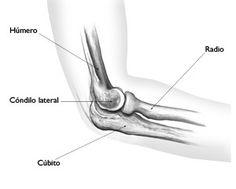Lisfranc fracture anatomie pinterest radiologie et anatomie - Fracture main coup de poing ...