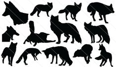 13 fox silhouette vectors added with different shapes and forms ideal for wildlife vector graphics alos forest and related vector illustrations.